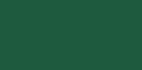 Aloe 521