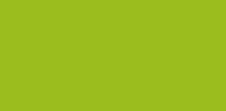 Kiwi 654